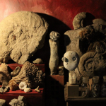 fossiles et cailloux ©fabien.ansault cabinet-curiosités-chamesson chatillon sur seine café associatif des z'uns possible terrasse bord de seine