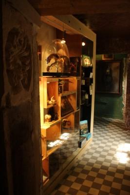 les z'uns possible chamesson chatillon sur seine musée cabinet de curiosités galerie terrasse en bord de seine
