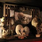 étage des oiseaux©fabien.ansault cabinet-curiosités-chamesson chatillon sur seine café associatif des z'uns possible terrasse bord de seine